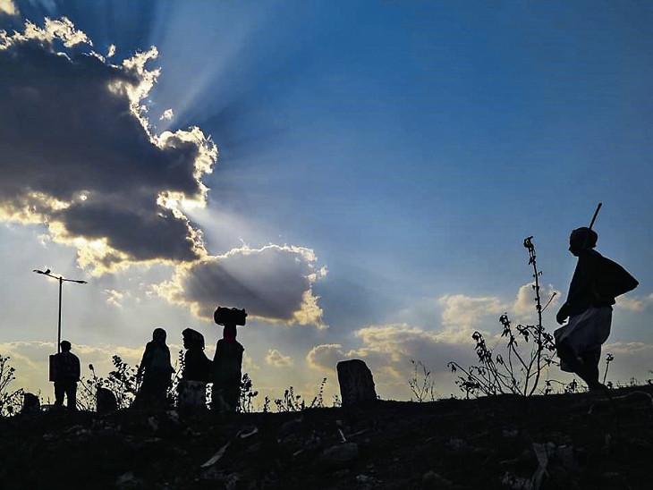 30 વર્ષના સૌથી નબળા ચોમાસાનો અણસાર, ગત વર્ષની સરખામણીમાં ગુજરાતમાં 46% ઓછો વરસાદ, 15 જિલ્લામાં 50%થી વધુ વરસાદની ઘટ|અમદાવાદ,Ahmedabad - Divya Bhaskar