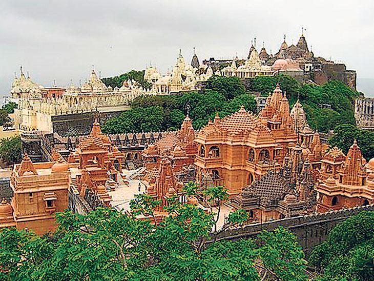 શેત્રુંજય ડુંગર પર નીલકંઠ મહાદેવના પુજારી જૈનો દ્વારા નક્કી કરવામાં આવશે : હાઇકોર્ટ ભાવનગર,Bhavnagar - Divya Bhaskar