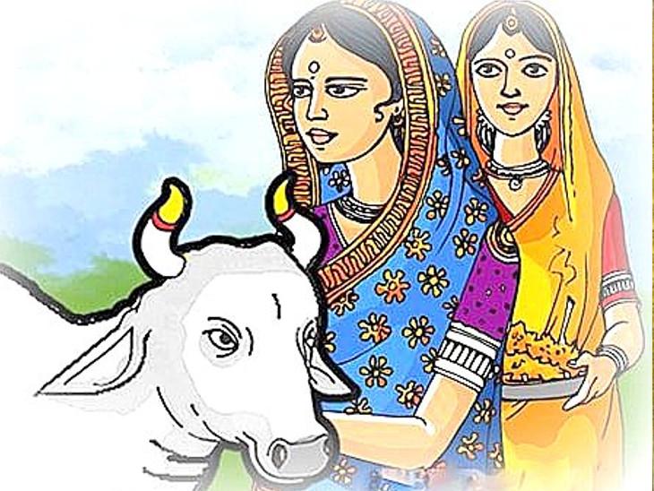 કાલે બોળ ચોથ ઊજવાશે, આ દિવસે મહિલાઓ ઘઉંની બનેલી વાનગી કે સમારેલા શાકનું સેવન કરતી નથી|ધર્મ,Dharm - Divya Bhaskar