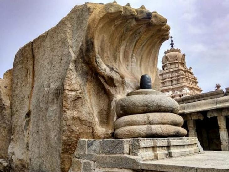 આંધ્રપ્રદેશના લેપાક્ષી મંદિરમાં લગભગ 450 વર્ષ જૂનું નાગલિંગ છે, રામાયણ કાળ સાથે મંદિરનો ઇતિહાસ જોડાયેલો છે|ધર્મ,Dharm - Divya Bhaskar