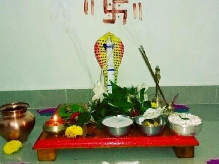 27 ઓગસ્ટના રોજ જીવિત સાપની પૂજા કરવી નહીં કે સાપને દૂધ પીવડાવવું નહીં, નાગદેવની મૂર્તિ પૂજામાં હળદર જરૂર ચઢાવવી|ધર્મ,Dharm - Divya Bhaskar