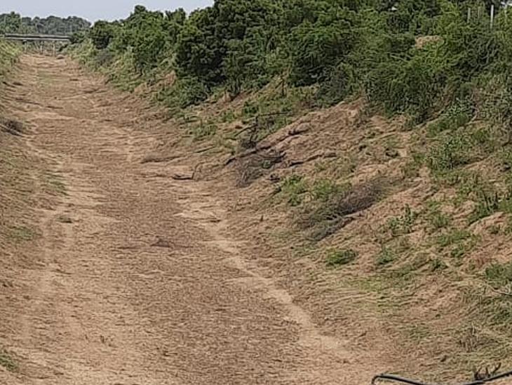 સુજલામ સુફલામ કેનાલ ખાલી જોઈ ખેડૂતો ચિંતત - Divya Bhaskar