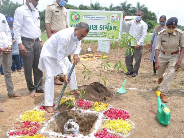 સ્વામિનારાયણ મંદિર ખાતે યોજાયેલા કાર્યક્રમમાં ઘારાસભ્ય સુખરામ રાઠવા હાજર રહી વૃક્ષારોપણ કર્યું હતું. - Divya Bhaskar
