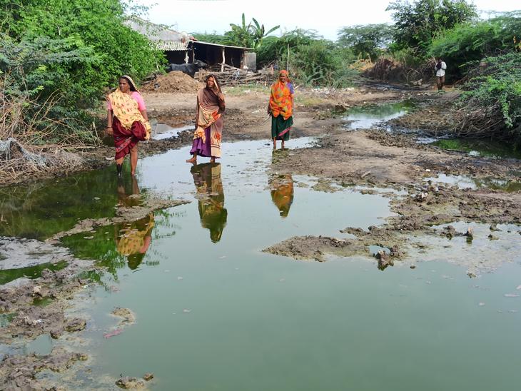 લખતરના છારદ ગામે છેલ્લા બે વર્ષથી રોડ ઉપર ભરાઈ ગયેલું પાણીની ગંદકીમાંથી વિસ્તારના લોકો પસાર થવા મજબુર છે. - Divya Bhaskar