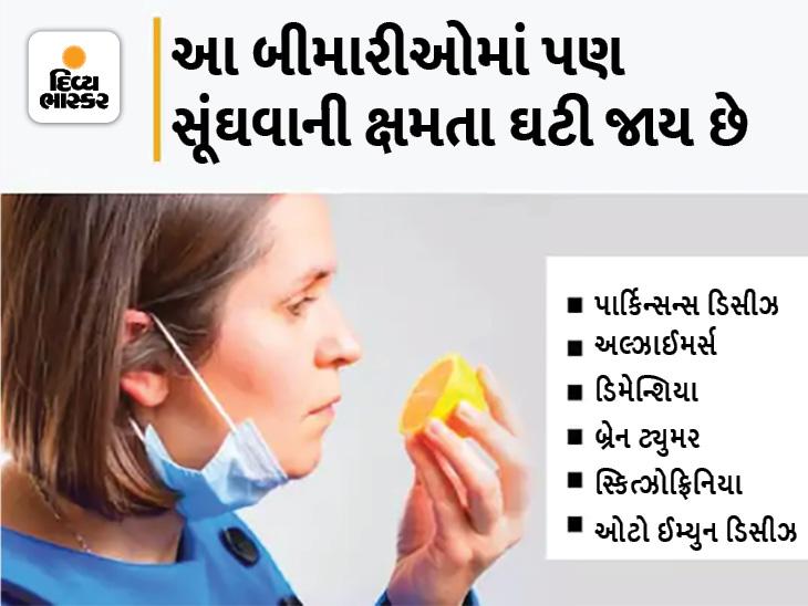 સૂંઘવાની ક્ષમતા ઘટે તો અલ્ઝાઈમર્સ અને બ્રેન ટ્યુમર હોઈ શકે છે, આ ટેસ્ટ કરી જાણો તમને કઈ બીમારી છે|હેલ્થ,Health - Divya Bhaskar