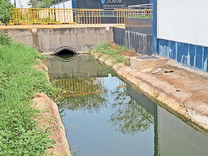 ઝઘડિયા વિસ્તારમાં વરસાદ જ નથી છતાં વરસાદી કાંસમાં કંપની દ્વારા દૂષિત પાણી છોડવામાં આવ્યું છે. - Divya Bhaskar