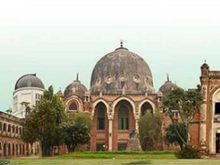 MSUમાં છેલ્લાં 5 વર્ષ દરમિયાન પ્રથમ વર્ષમાં 4563 વિદ્યાર્થીઓ વધ્યા, ચાલુ વર્ષે 762 વધુ છાત્રોનો પ્રવેશ વડોદરા,Vadodara - Divya Bhaskar