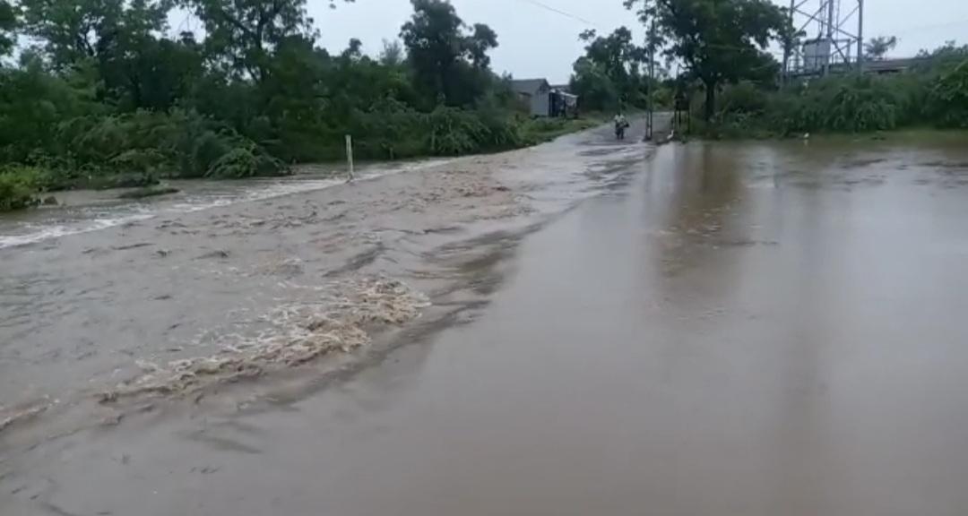 અમરેલી જિલ્લામા સાર્વત્રિક વરસાદ, રાજુલાના સાજણાવાવ ગામની સાજણી નદીમાં પુર અમરેલી,Amreli - Divya Bhaskar