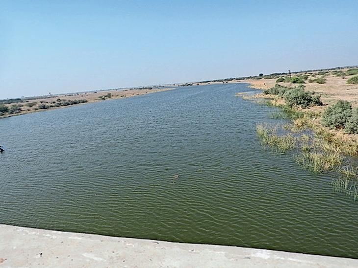 ગુજરાતમાં એક બાજુ જળસંકટ, ને બીજી બાજુ રણમાં નર્મદાના લાખો ગેલન પાણીનો વ્યય અને રણની સેટેલાઇટ તસ્વીર - Divya Bhaskar