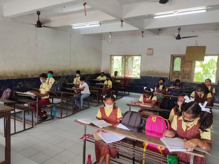 વ્યારામાં શાળા પ્રવેશ અને ઝીગ ઝેગ પદ્ધતિઓ વિધાર્થીઓને બેસાડીયા હતા. - Divya Bhaskar