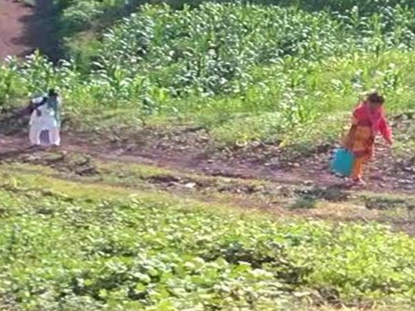 આરોગ્ય સ્ટાફને કાચા રસ્તે પગપાળા ચાલીને જવું પડ્યું હતું. - Divya Bhaskar