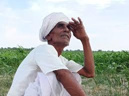 ગાંધીનગર જિલ્લામાં સિઝનનો 32 ટકા જ વરસાદ વરસ્યો, હજુ 68 ટકા વરસાદની અછત વચ્ચે ચિંતાનો માહોલ ગાંધીનગર,Gandhinagar - Divya Bhaskar