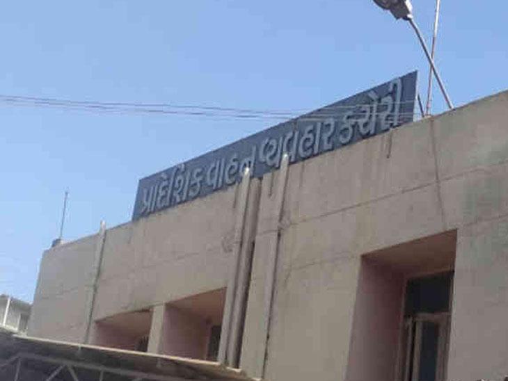 સ્ક્રેપ સ્કીમ જાહેર થયા બાદ RTO દ્વારા વાહનો માટે ફિટનેસ કેમ્પ, ભાવનગર જિલ્લાના 61,555 વાહનોનો સ્ક્રેપમાં સમાવેશ|ભાવનગર,Bhavnagar - Divya Bhaskar