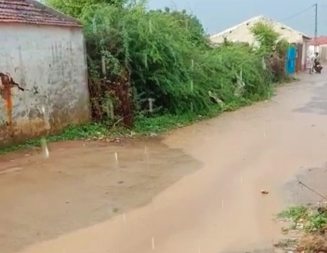 રાપરના ગેડી ગામેં વરસાદના પાણી વહી નીકળ્યા હતા