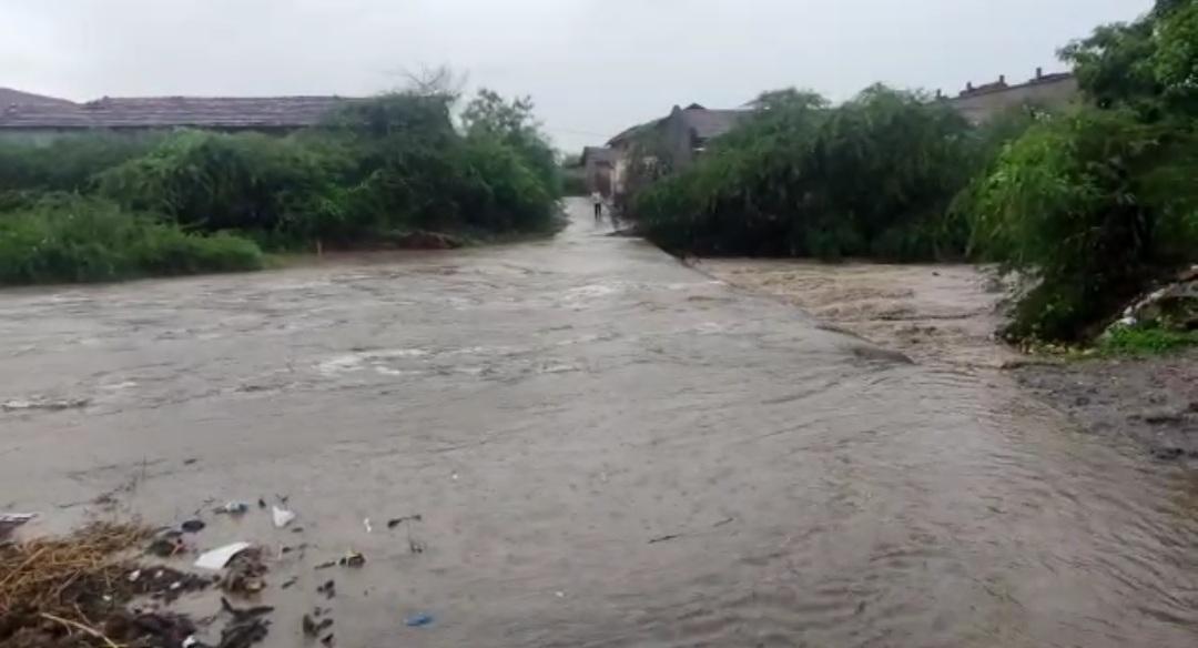રાજુલાના પંથકમા ધોધમાર વરસાદ, ડુંગર ગામમા 2 ઇંચ વરસાદથી ઘોડાપુરના દ્રશ્યો|અમરેલી,Amreli - Divya Bhaskar