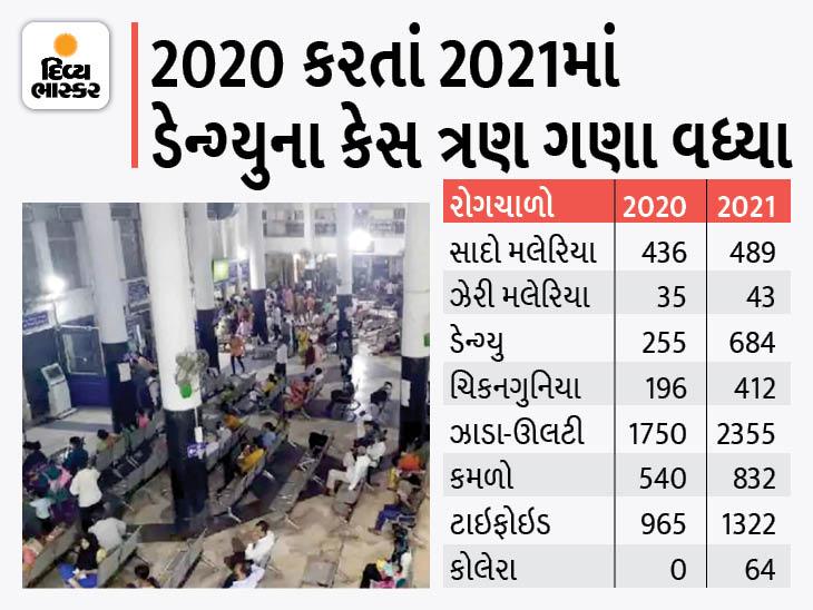 પાણી અને મચ્છરજન્ય રોગચાળો બેકાબૂ, ઓગસ્ટ મહિનામાં મલેરિયાના 244 અને ડેન્ગ્યુના 494 કેસ નોંધાયા, અધિકારીઓ બેદરકાર|અમદાવાદ,Ahmedabad - Divya Bhaskar