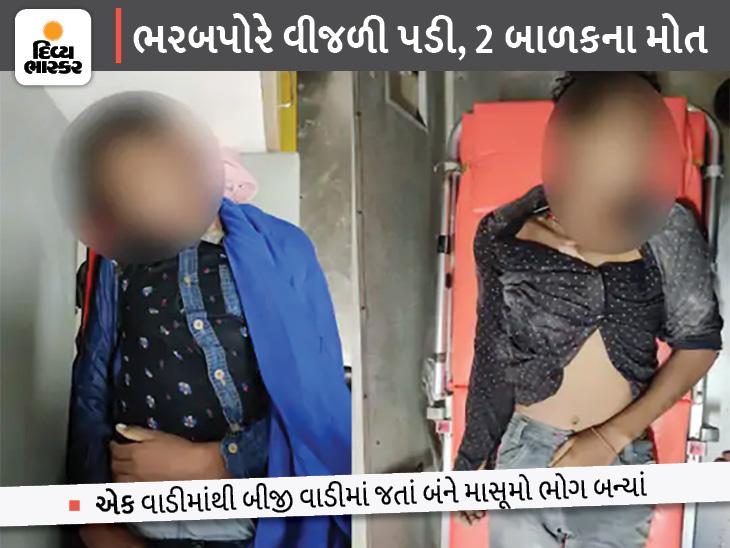 જસદણનાં નવાગામમાં એક વાડીએથી બીજી વાડીએ જતા બે બાળકો પર વીજળી પડી, બંનેના મોત|રાજકોટ,Rajkot - Divya Bhaskar