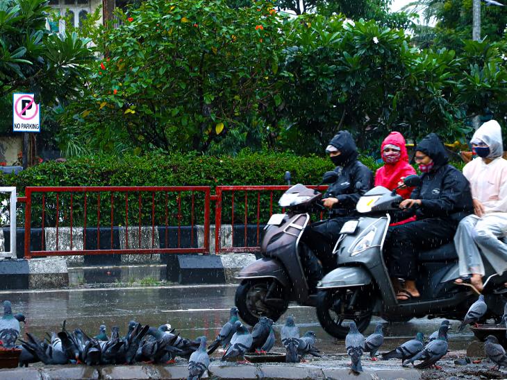 સોમવારે દિવસભર શહેરમાં વરસાદી માહોલ રહેતાં વાહનચાલકોએ રેઈનકોટ-છત્રીનો સહારો લેવો પડ્યો હતો, જ્યારે પારેવડાંઓએ વરસાદની મજા માણી હતી. - Divya Bhaskar