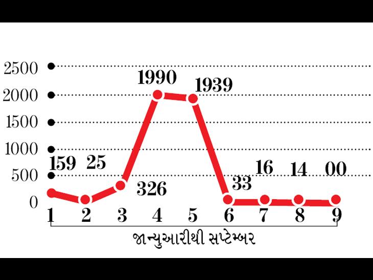 2021  : કોરોનાના કેટલા કેસ - Divya Bhaskar