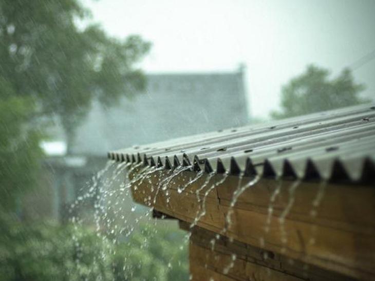 નર્મદાના તિલકવાડામાં દોઢ ઈંચ અને સાગબારામાં બે ઈંચ વરસાદ|ભરૂચ,Bharuch - Divya Bhaskar