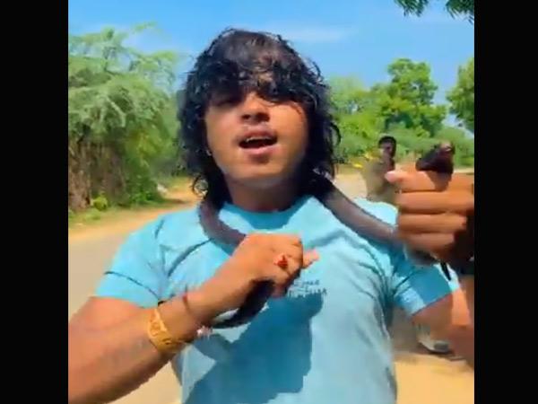 ગાયક કલાકાર અર્જુન ઠાકોરે પ્રશંસા મેળવા માટે કાયદાને નેવે મૂકી સાપ સાથે મસ્તી કરી હતી. - Divya Bhaskar