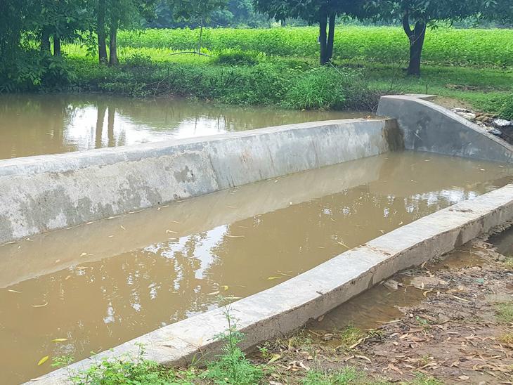 નસવાડી તાલુકામા નરેગા યોજના હેઠળ બનેલ ચેકડેમમા પાણીનો સંગ્રહ થયેલો તસવીરમાં જણાય છે. - Divya Bhaskar