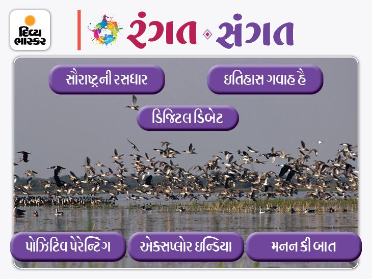 પરીક્ષામાં સફળ થવાની સ્માર્ટ વર્ક ફોર્મ્યૂલા, ગુજરાતનું નવું એક ટુરિસ્ટ ડેસ્ટિનેશન, ભાજપનો ગેમપ્લાન, મેઘાણીની ઓડિયો વાર્તા સહિત આજનું રંગત સંગત|રંગત-સંગત,Rangat-Sangat - Divya Bhaskar