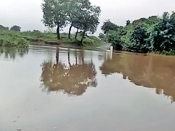 કંટેશ્વર પાસે ઢાઢર નદીમાં પાણી આવતા કોઝ વે ઉપર બે મીટર પાણી ફરી વળ્યું. - Divya Bhaskar