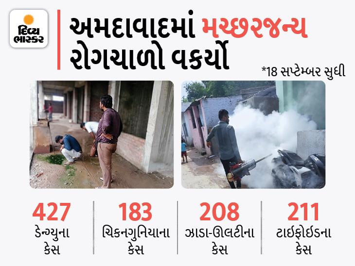 અમદાવાદમાં ડેન્ગ્યુના કેસોમાં વધારો થયો છે, ઘરની આસપાસ કે છત પર પાણીનો ભરાવો થવા ન દેવો: મ્યુનિસિપલ હેલ્થ ઓફિસર અમદાવાદ,Ahmedabad - Divya Bhaskar