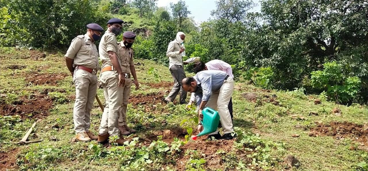 બનાસકાંઠા કલેક્ટરના હસ્તે અંબાજી ગબ્બર અને કોટેશ્વર ખાતે વૃક્ષારોપણ કરાયું|પાલનપુર,Palanpur - Divya Bhaskar