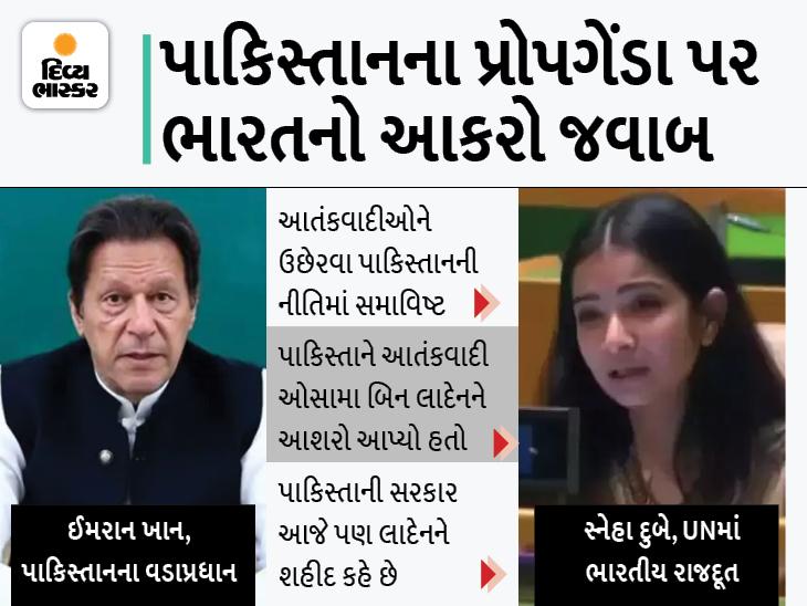 ઈમરાન ખાને કહ્યું- કાશ્મીર પર ભારતે બળજબરીથી કબજો કર્યો; ભારતનો જવાબ- ખોટું બોલી રહ્યો છે આતંકવાદીઓને આશરો આપનારો દેશ|વર્લ્ડ,International - Divya Bhaskar