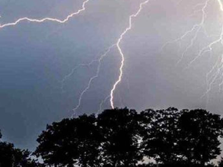 રાજકોટ જિલ્લામાં વીજળી પડતા 7 પશુનાં મોત, 12 રોડ બંધ; ગોંડલમાં 6 ઈંચ વરસાદ|રાજકોટ,Rajkot - Divya Bhaskar