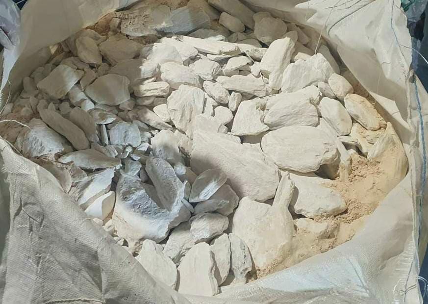 મુન્દ્રા પોર્ટથી પકડાયેલા કરોડો રૂપિયાના ડ્રગ્સ મામલાના આરોપી દંપતીના વધુ એક દિવસના રિમાન્ડ મંજૂર|ભુજ,Bhuj - Divya Bhaskar