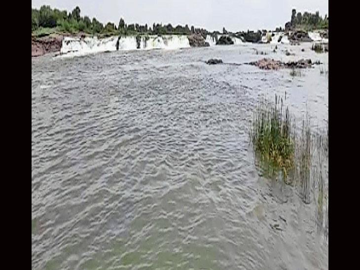 મચ્છુ નદીને લાંબા સમય બાદ નવજીવન. - Divya Bhaskar