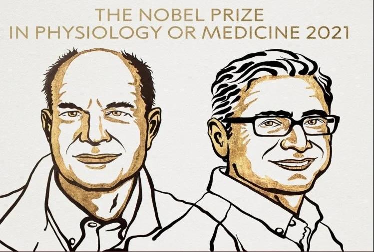 મેડિસિનમાં આ બે અમેરિકન વૈજ્ઞાનિકોને મળ્યો નોબેલ, આ શોધ માટે બંને વૈજ્ઞાનિકોને મળ્યું સન્માન વર્લ્ડ,International - Divya Bhaskar
