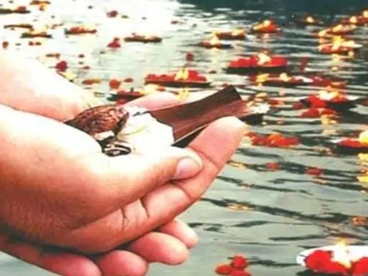 સર્વપિતૃ અમાસના દિવસે પાણીમાં તલ મિક્સ કરીને સ્નાન કરો અને પીપળામાં કાચું દૂધ ચઢાવવાથી પિતૃઓ પ્રસન્ન થાય છે
