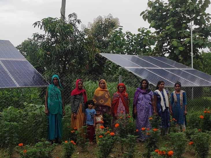 દાહોદના ચીલાકોટમાં પાણી સમિતિ મહિલાઓ જ ચલાવે છે, સોલારથી પાણી પહોંચાડે છે - Divya Bhaskar
