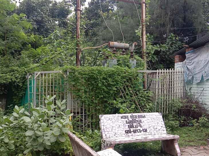 છોટાઉદેપુર નગરમાં ઠેર ઠેર જગ્યાએ વીજ પોલ ઉપર ઊગી નીકળેલા વેલા તથા આસપાસ ઝાડી ઝાંખરા સાફ કરાવવા નગરજનો દ્વારા માગ પામી છે. - Divya Bhaskar