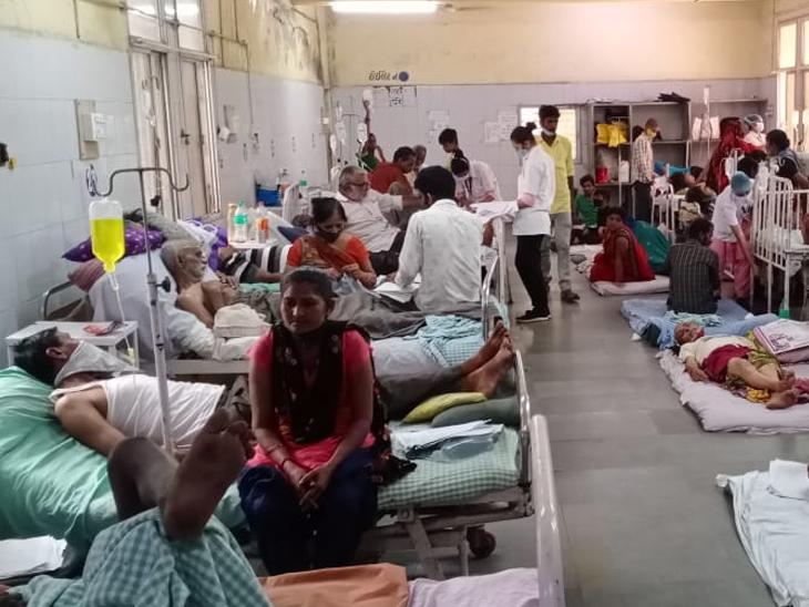 સિવિલમાં સપ્ટેમ્બરમાં ડેન્ગ્યુના 140 અને મેલેરિયાના 115 દર્દી દાખલ કરાયા - Divya Bhaskar