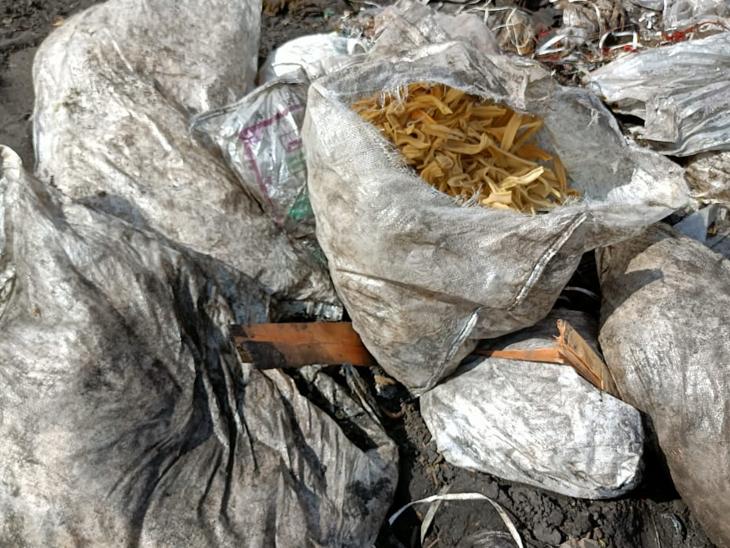 હોટેલમાંથી કચરો ઠાલવી દેવાય છે, કચરો મૃત્યુનું કારણ હોઈ શકે - Divya Bhaskar