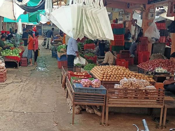 પાદરા સરદાર પટેલ શાકમાર્કેટ બજારમાં શાકભાજીની આવકમાં વિવિધ કારણોસર ઘટાડો થતા શાકભાજીની આવકમાં ભડકો થવા પામ્યો છે ગૃહિણીનું બજેટ ખોરવાઈ રહ્યું છે. - Divya Bhaskar