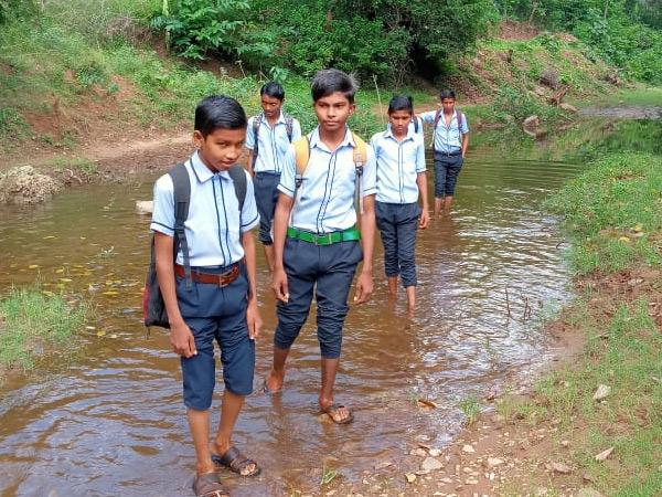 જાંબુડીના વિદ્યાર્થીઓ પોતાનું ભવિષ્ય ઉજજ્વળ બનાવવા કોતરમાં થઈ અભ્યાસ માટે જઇ રહ્યા છે. - Divya Bhaskar