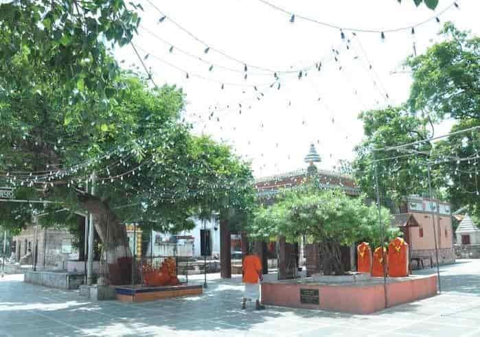 ઝુંડ ભવાની માતાજી મંદિર - Divya Bhaskar