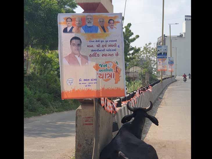 જેતલપુર બ્રિજ - Divya Bhaskar