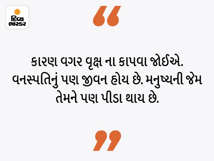 આપણામાં જીવ હોય છે તેમ વનસ્પતિમાં પણ હોય છે, વૃક્ષ કાપતા પહેલાં અનેકવાર વિચાર કરવો|ધર્મ,Dharm - Divya Bhaskar