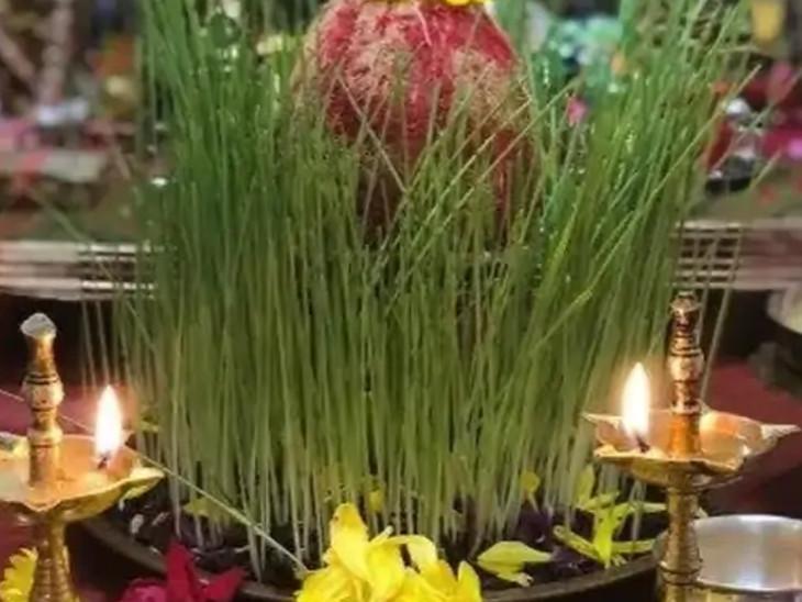 પૂજામાં જવારા સુખ-સમૃદ્ધિનું પ્રતીક હોય છે, આ વિધાનમાં અનાજના સન્માનનો સંદેશ છે|ધર્મ,Dharm - Divya Bhaskar
