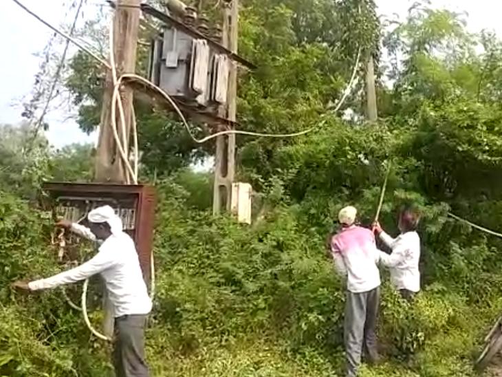 ગ્રામજનોએ જાતે વિજલાઇન પરના ઝાડી ઝાંખરા સાફ કર્યા હતા. - Divya Bhaskar
